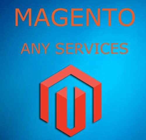 Magento Module Development and Site Development