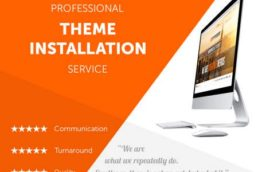 WordPress theme Installation & Customisation